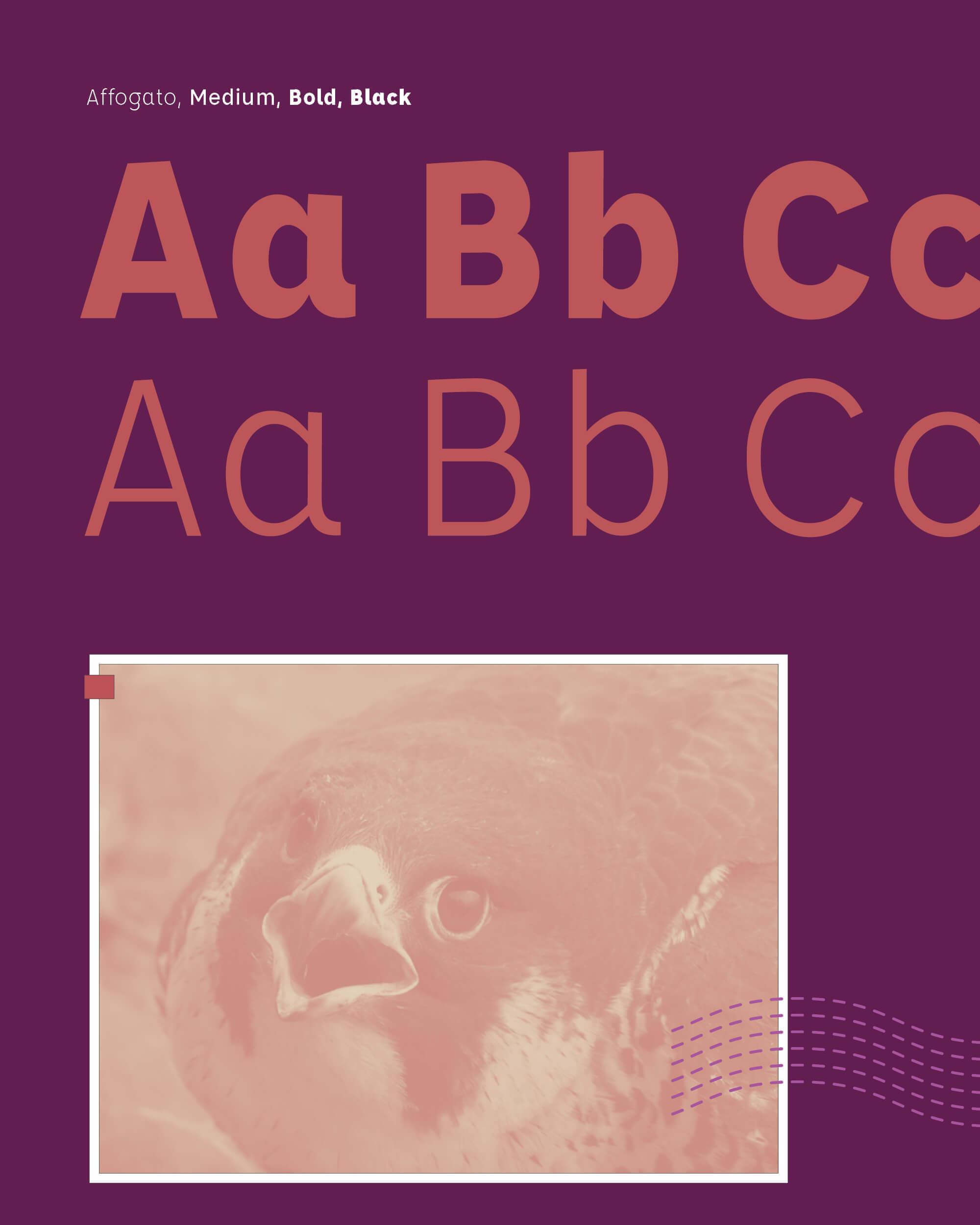 River of birds typography