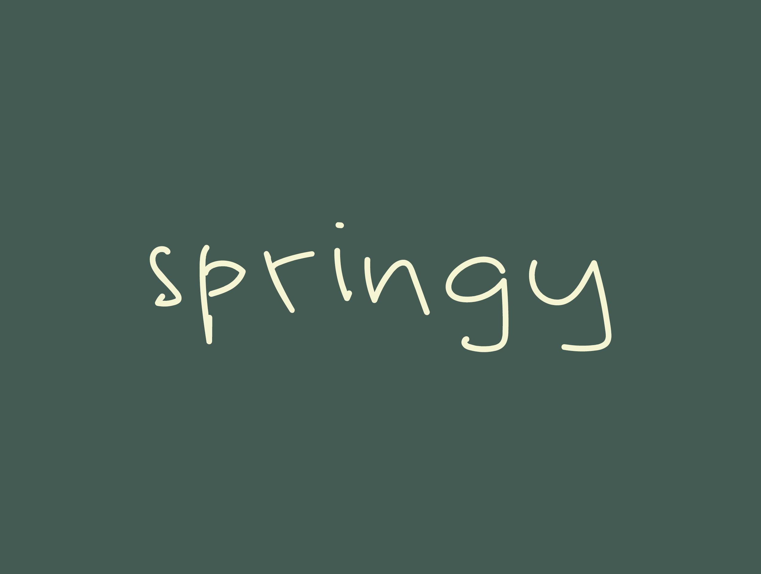 springy wordmark closeup